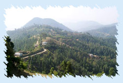 Chail Hill Station Himachal Pradesh